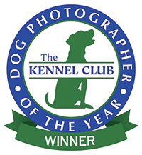 Assistance Dogs and Dog Charities 2nd place Winner